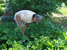 Aubrey works in a garden.