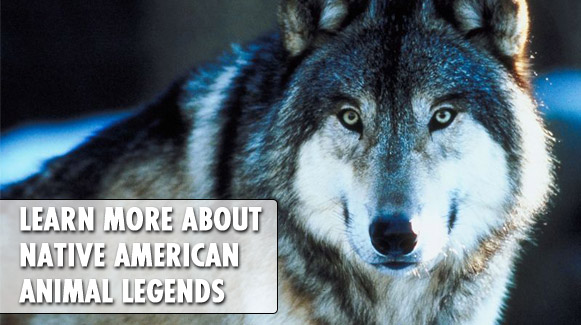 Learn more about Native American animal legends
