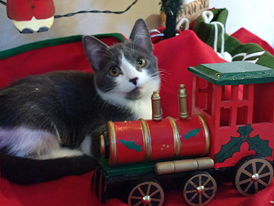Photo of Noelle under the Christmas tree with a toy train