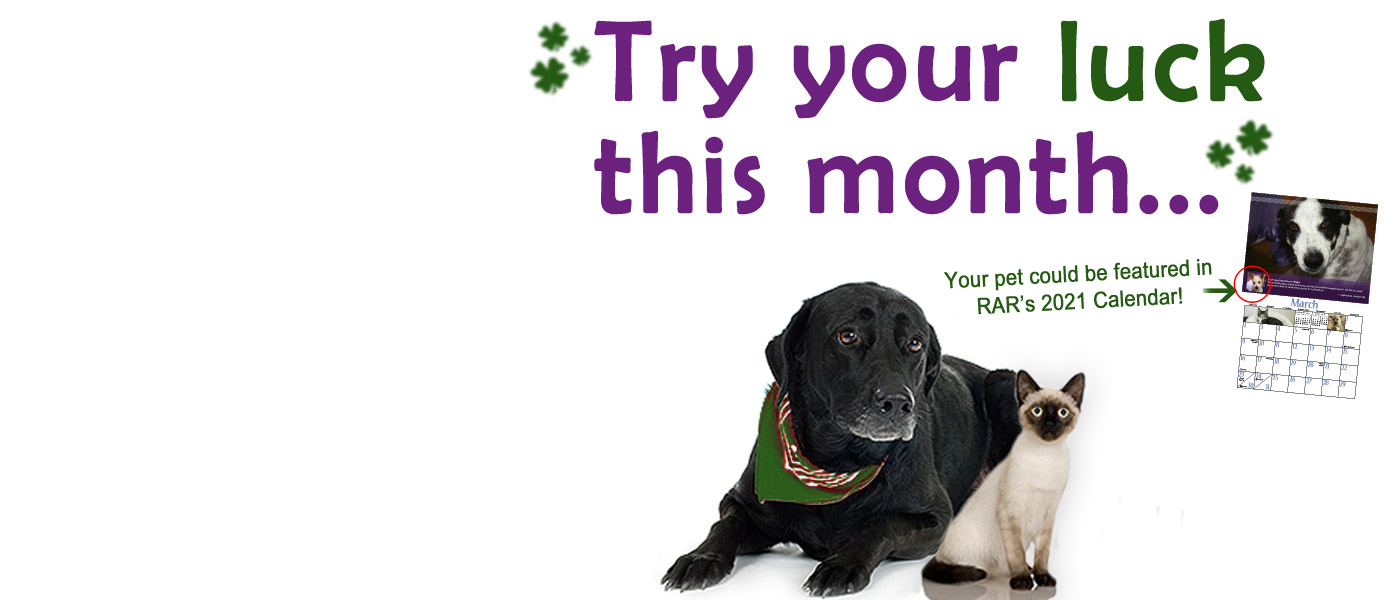 Enter the 2019 Pet Contest - create your Sage Page today for a chance to have your pet featured in the next RAR calendar...