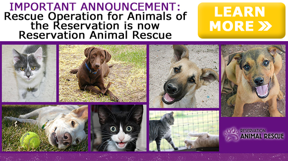 Rescue Operation for Animals of the Reservation is now Reservation Animal Rescue!