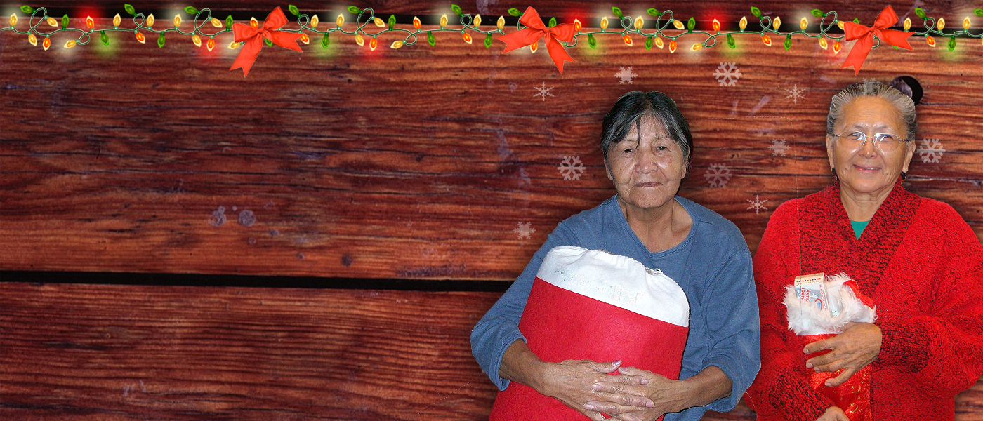 Help an Elder in need this holiday season!